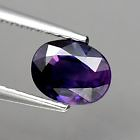 Genuine Purple Sapphire .92ct 6.2 x 4.8mm Thailand SI1