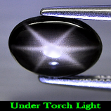 Genuine Cabochon Black Star Sapphire 1.47ct 8.6 x 6.0mm Oval Opaque