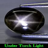 Genuine Cabochon Black Star Sapphire 1.53ct 8.7 x 6.0mm Oval Opaque